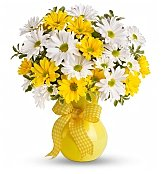 -Geo Low Price: Daisy Delight Bouquet